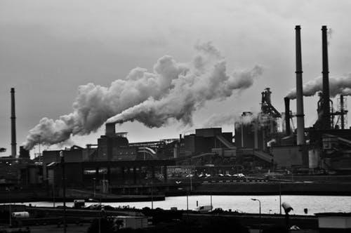 harmful effects of smog