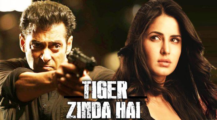 tiger zinda hai movie review daily bees