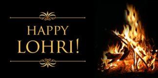 Happy Lohri Daily Bees