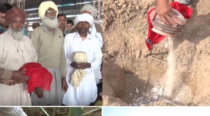 Tree plantation on Human Ashes