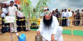 Mega Tree Plantation Campaign by Baba Ram Rahim Ji Followers