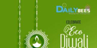 Eco friendly diwali celebration ideas daily bees