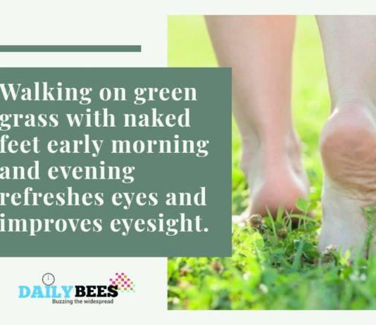 ayurvedic remedies for eyesight - daily bees